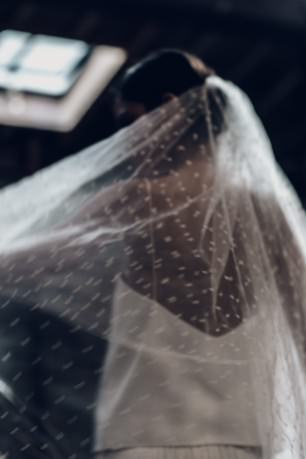Long veil in retro plumetis